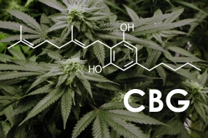 cbg-ultimate-cannabinoid-08-10